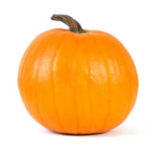 Pumpkin Pie Squash 1 Count