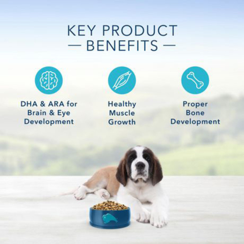Blue Buffalo Life Protection Puppy Lg Breed, Chicken Brown Rice 22-lb