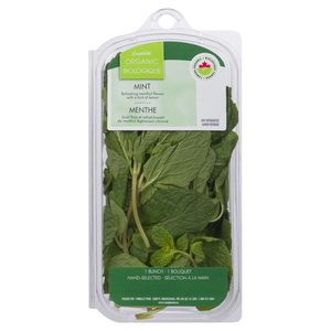 Compliments Organic Mint 28 g
