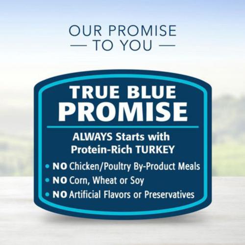 Blue Buffalo Delights Wet Dog Food Roasted Turkey Flavor 99 g