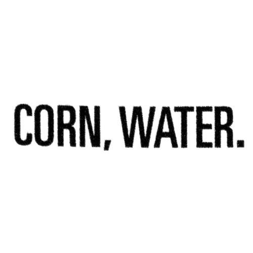 Compliments Balance Corn Salt-Free Crispy & Sweet 341 ml
