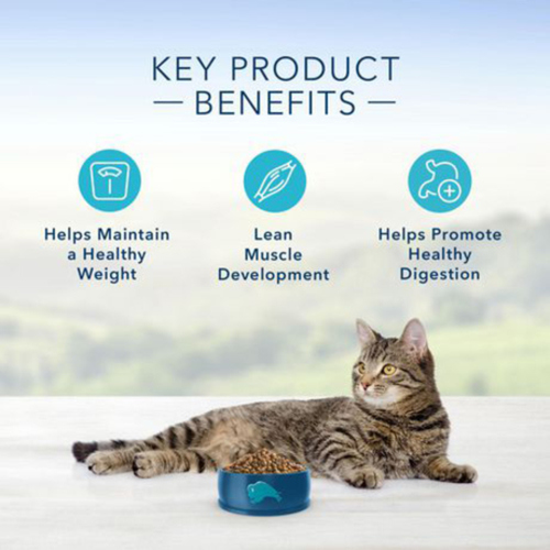 Blue Buffalo Dry Cat Food Weight Control Chicken & Brown Rice 2.2 kg