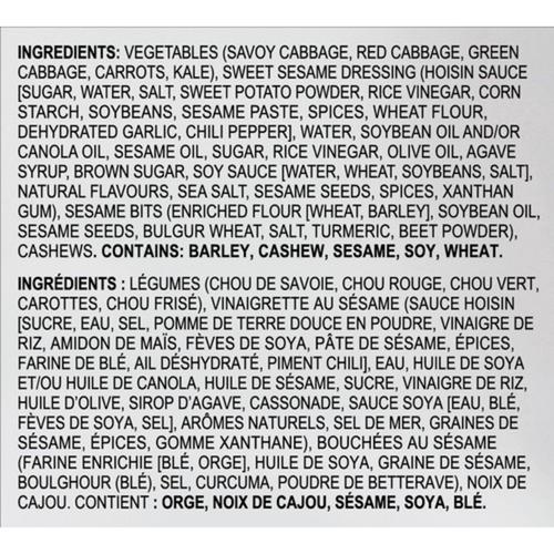 Eat Smart Salad Kit Asian Sesame Mix 340 g