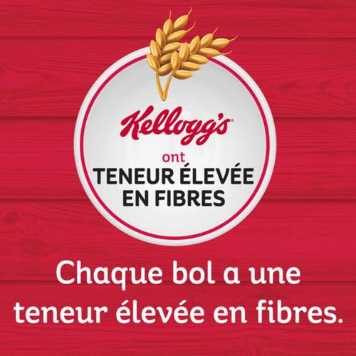 Kellogg's Mini Wheats Regular Cereal 510 g