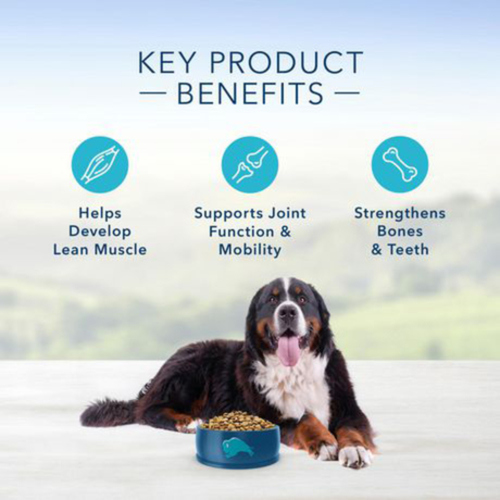 Blue Buffalo Life Protection Dry Dog Food Large Breed Adult Lamb and Brown Rice 22 lb