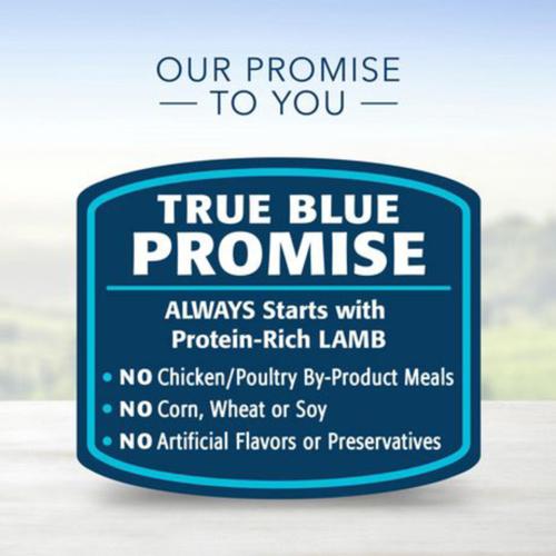 Blue Buffalo Life Protection Dog Food ADULT Lamb and Brown Rice 9.9 kg