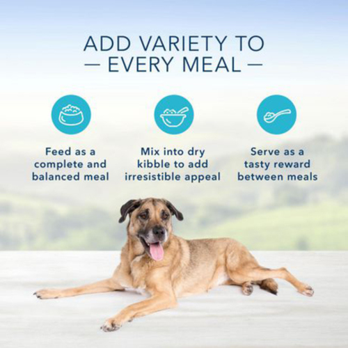Blue Buffalo Life Protection Dog Food SENIOR, Chicken and Brown Rice 4.5 kg