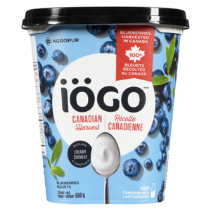 Iögo Canadian Harvest Blueberries 3.2% M.F. Yogurt 650 g