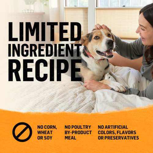 Purina Beyond Simply 9 Dry Dog Food White Meat Chicken & Whole Barley 1.67 kg