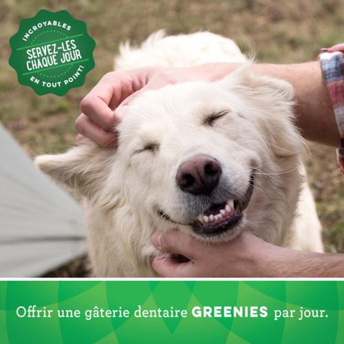Greenies Original Teenie Natural Dental Dog Treats 22 Treats 6 oz