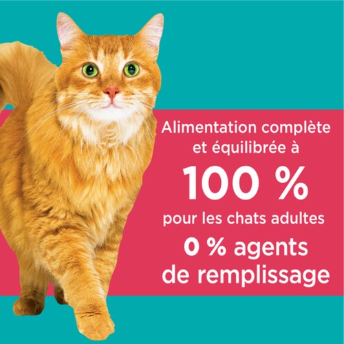 Iams Dry Cat Food Proactive Health Adult Hairball Care Chicken And Salmon 3.18 kg