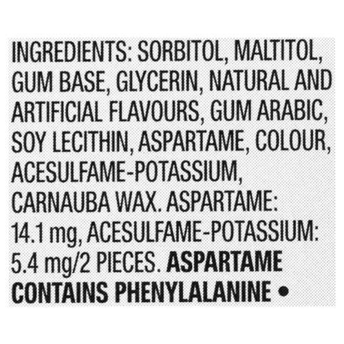 Excel Spearmint Gum 12 Pieces