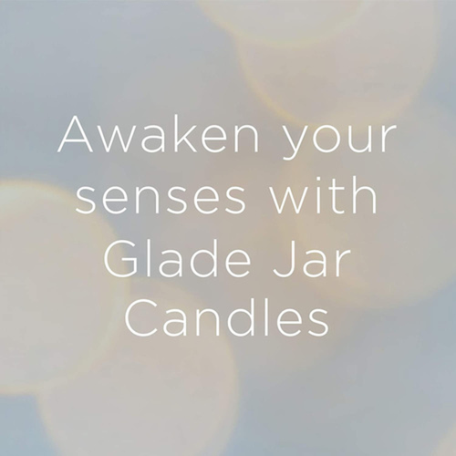 Glade Scented Jar Candle Air Freshener Apple Cinnamon 1 pack